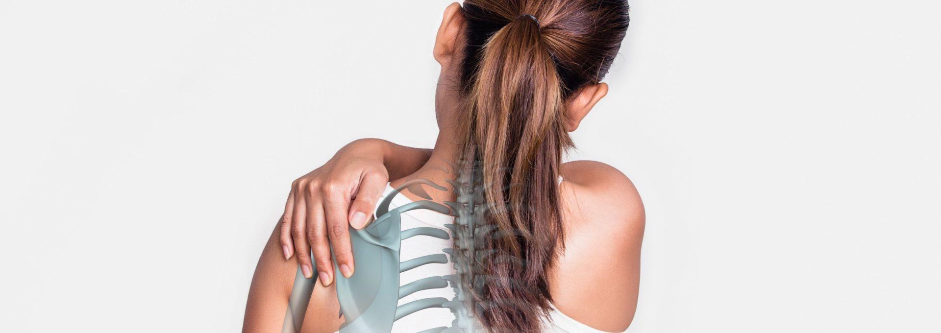 Prótesis de hombro