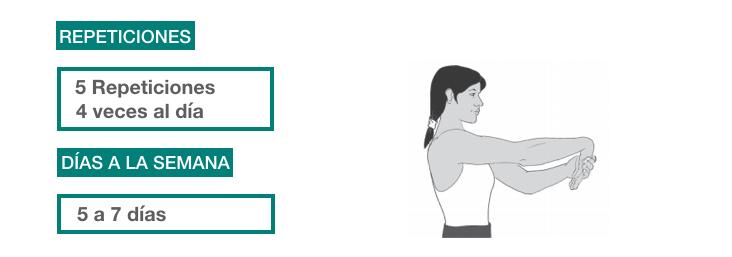 ejercicios rehabilitación epicondilitis_ flexión muñeca